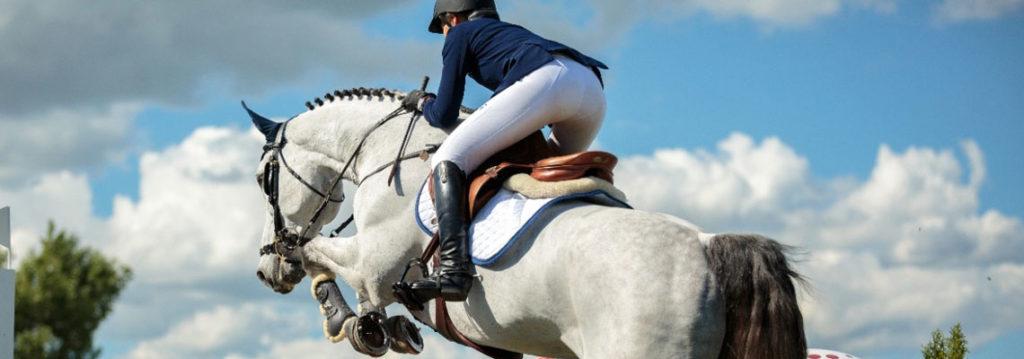 Acheter des vêtements d'équitation