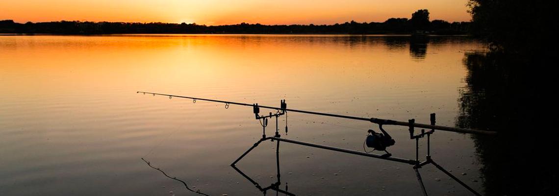 pêche à la carpe